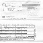 1st official job pay stub